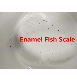 Ways to Prevent the Enamel Fish Scale
