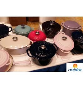 Physical Properties of Cast Iron Enamel